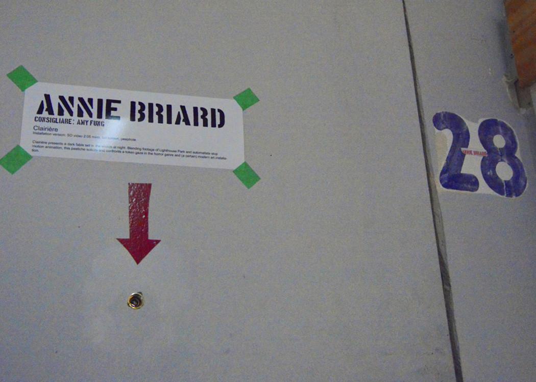 Briard5